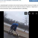 В Петроградском районе грязь утрамбовывают в ливневку