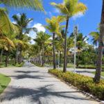 Доминикана может начать принимать туристов в середине лета