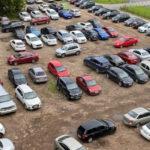 Петербуржцы требуют включить парковку чиновников в список зелёных насаждений